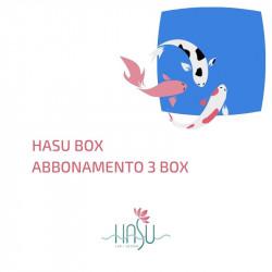 HASU BOX x 3